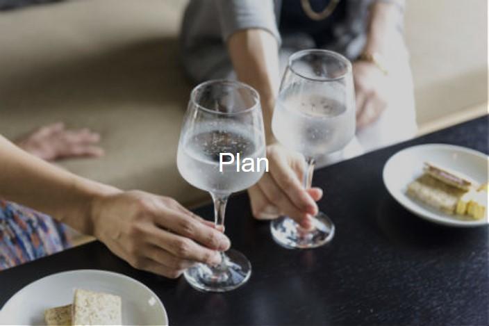 tripshot hotels koza plan